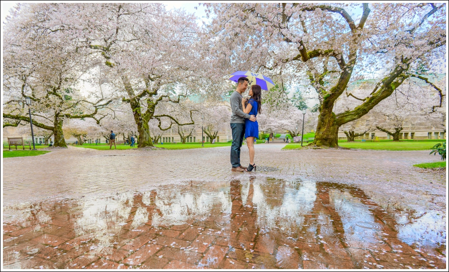 UW Cherry Blossoms Engagement Session-08