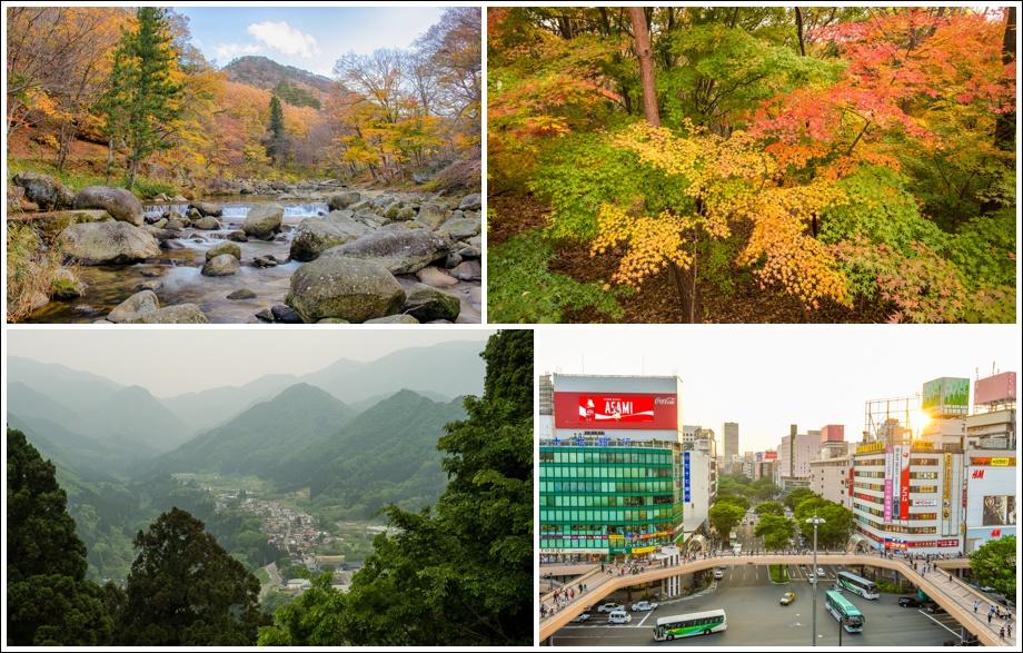 japan-autumn