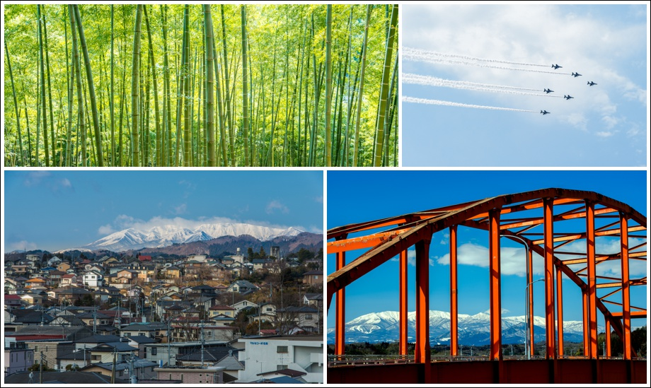 japan-bridge-bamboo