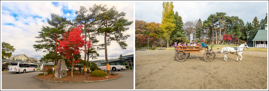 japan-kindergarten_0035